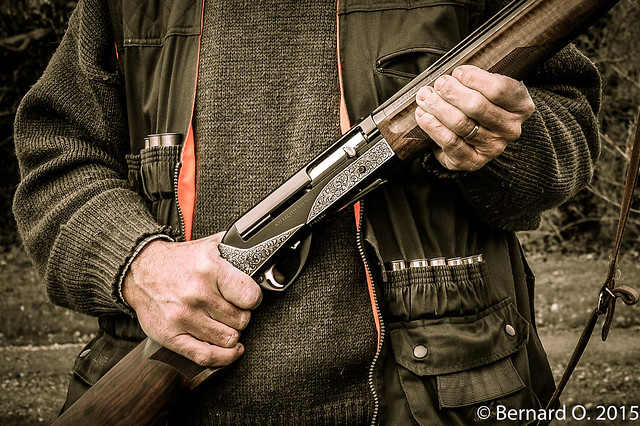 Chasseur sanglier